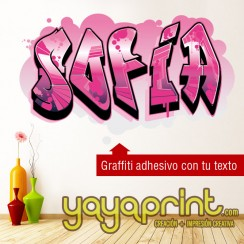 grafiti Paula vinilo decorativo adhesivo decorativo pegar pared papel decorado, vinilos sticker calcomanias decoración habitación decorar cuarto dormitorio cuna. Pegatina Calcomania, mural graffiti Ideas tendencias Decoració